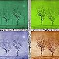 Winter Trees  by David Dehner