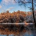 Winter Trees Lake Reflected by Julis Simo