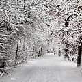 Winter Walk In Fairytale  by Annie Snel
