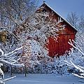 Winter Warmth  by Jeff Klingler