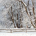 Winter - Westfield Nj - Snow Day by Mike Savad