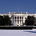 Winter White House  by Skip Willits