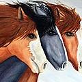 Horse Trio by Lyn DeLano