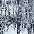 Winter Window by Alan L Graham