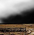 Winter Winds Se by Tim Richards