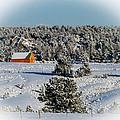 Winter Wonderland by Cathy Smith