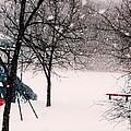Winter Wonderland In Park by Karen Majkrzak