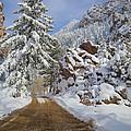 Winter Wonderland by James Souter