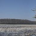 Winter Wonderland by Nick Atkin