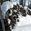 Winter Wood Supply by Jessie Parker