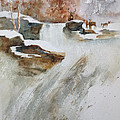 Winter Woods by Judy Fischer Walton