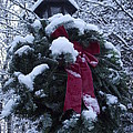 Winter Wreath by Michelle Welles