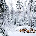 Winterland by Kennerth and Birgitta Kullman