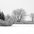 Winter's Cloak by Dee Cresswell