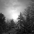 Winter's Eve by Linda Shannon Morgan