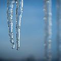 Winter's Fangs by Bill Pevlor