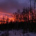 Winter's Fire by Jeremy Rhoades