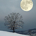 Winter's Moon by Laurinda Bowling