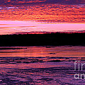 Winter's Sunset by Elizabeth Winter