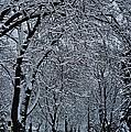 Winter's Work by Joseph Yarbrough