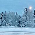 Wintery Blues by Malia Johnson