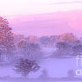 Wintery Irish Countryside by Imagery by Charly