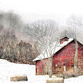 Wintry Mix by William Griffin