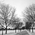Windy Road by CJ Rhilinger