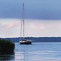 Winyah Bay Heading by Deborah Smith