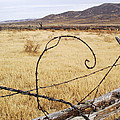 Wired Western by Mike and Sharon Mathews