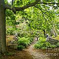 Wiscasset Sunken Garden by Jim Block
