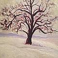Wisconsin Winter by Sal Settecase
