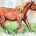 Horse Painted In Watercolor Wisdom by Maria's Watercolor