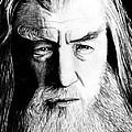 Wise Wizard by Kayleigh Semeniuk