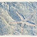 Wish Upon A Star by Anita Hubbard