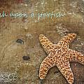 Wish Upon A Starfish by Regina  Williams