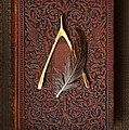 Wishbone And Feather On Antique Book by Jill Battaglia