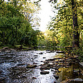 Wissahickon Creek Near Bells Mill by Bill Cannon