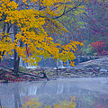 Wissahickon Morning In Autumn by Bill Cannon