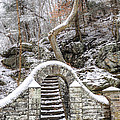 Wissahickon Steps In The Snow by Bill Cannon