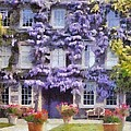 Wisteria Covered House by Desmond De Jager