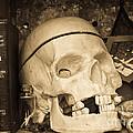 Witches Bookshelf by Edward Fielding