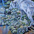 Wolf Creek by Derrick Higgins