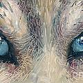 Wolf by Donna Chaasadah
