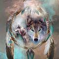Wolf - Dreams Of Peace by Carol Cavalaris