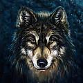 Wolf Head by Marcin Moderski