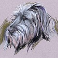 Wolfhound Portrait by MM Anderson