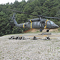 Wolfhounds Air Assault From A Uh-60 by Stocktrek Images