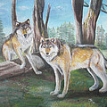 Wolves In The Forest by Thomas J Herring