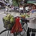 Woman Carrying Fruit On Bike by Sami Sarkis
